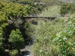 Ruta-rio